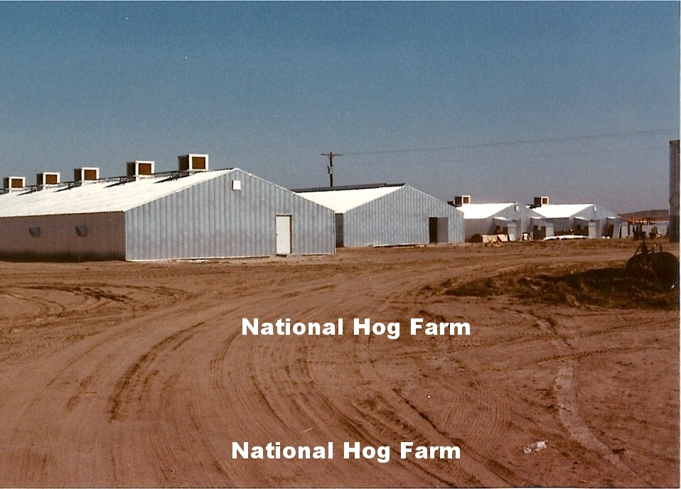 Hog Farm Mar 27 1989 (2).jpg