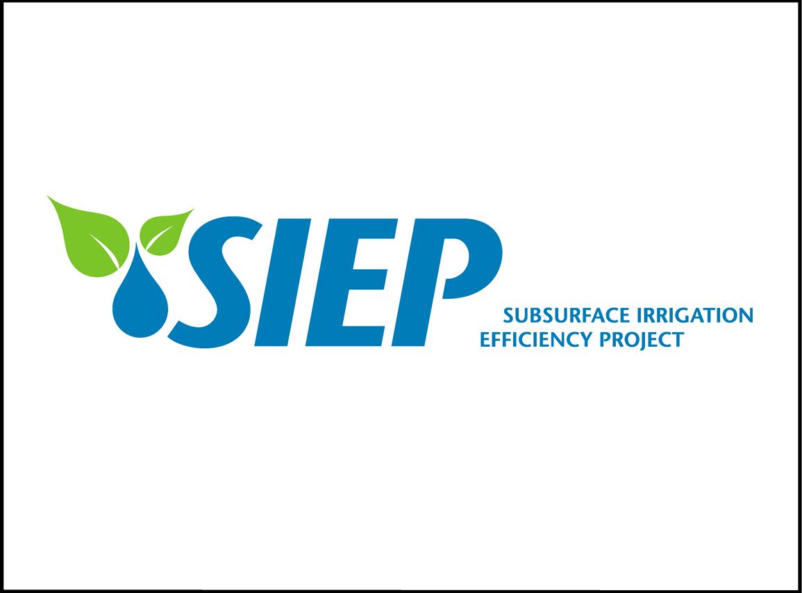 SIEP Side Tag - Framed.png