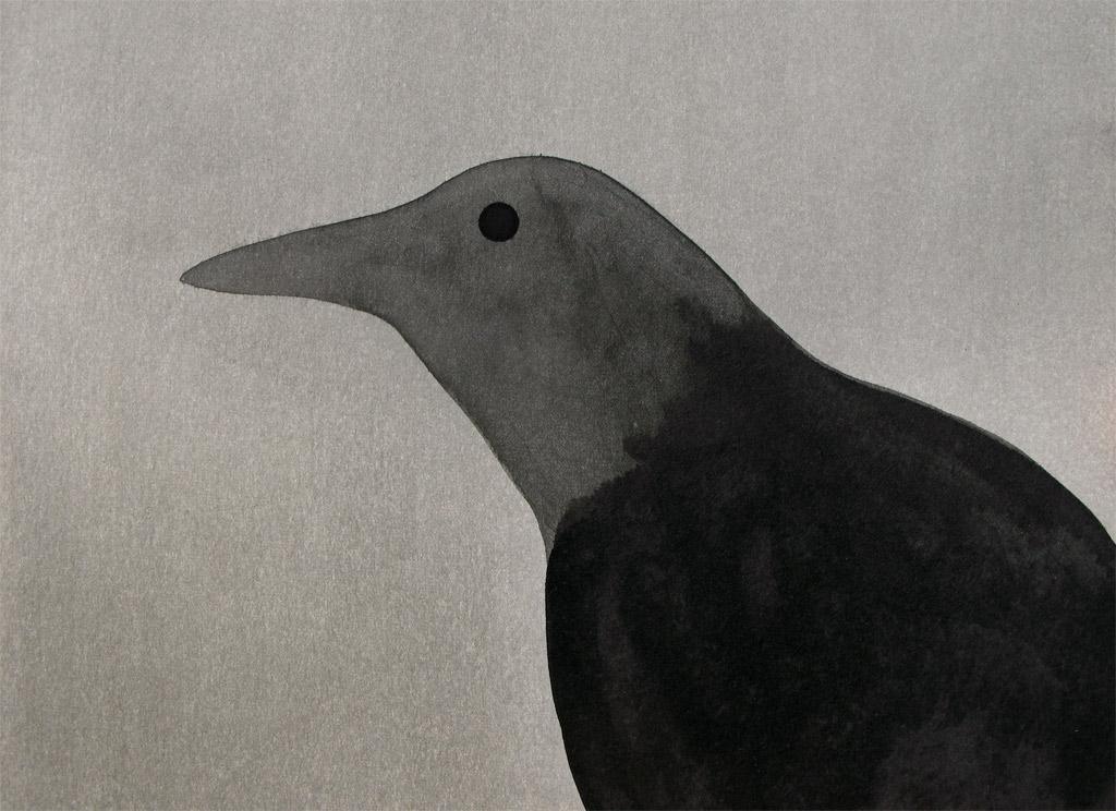 Raven, 2013