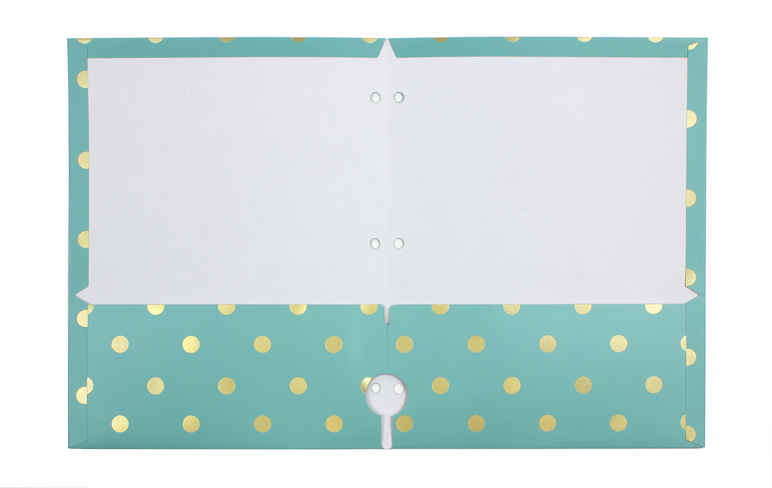 Gold Metallic Dot Portfolio // Greenroom, available at Target.