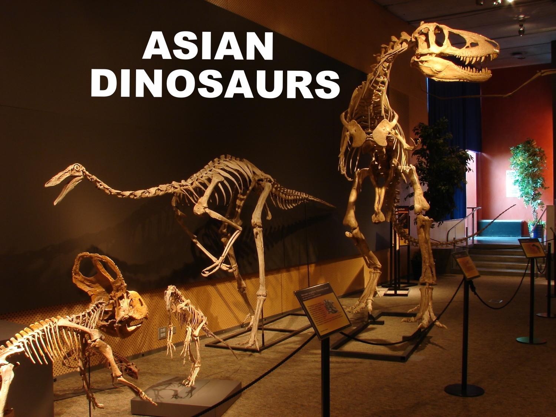Cretaceous Dinosaurs of Asia