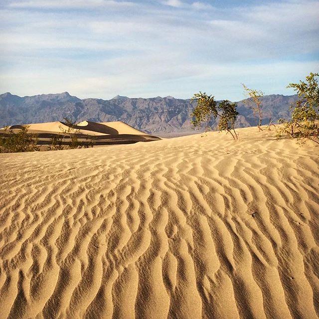 Death Valley sand dunes... #desert #california #sanddunes #west #deathvalley #nature #deathvalleynationalpark