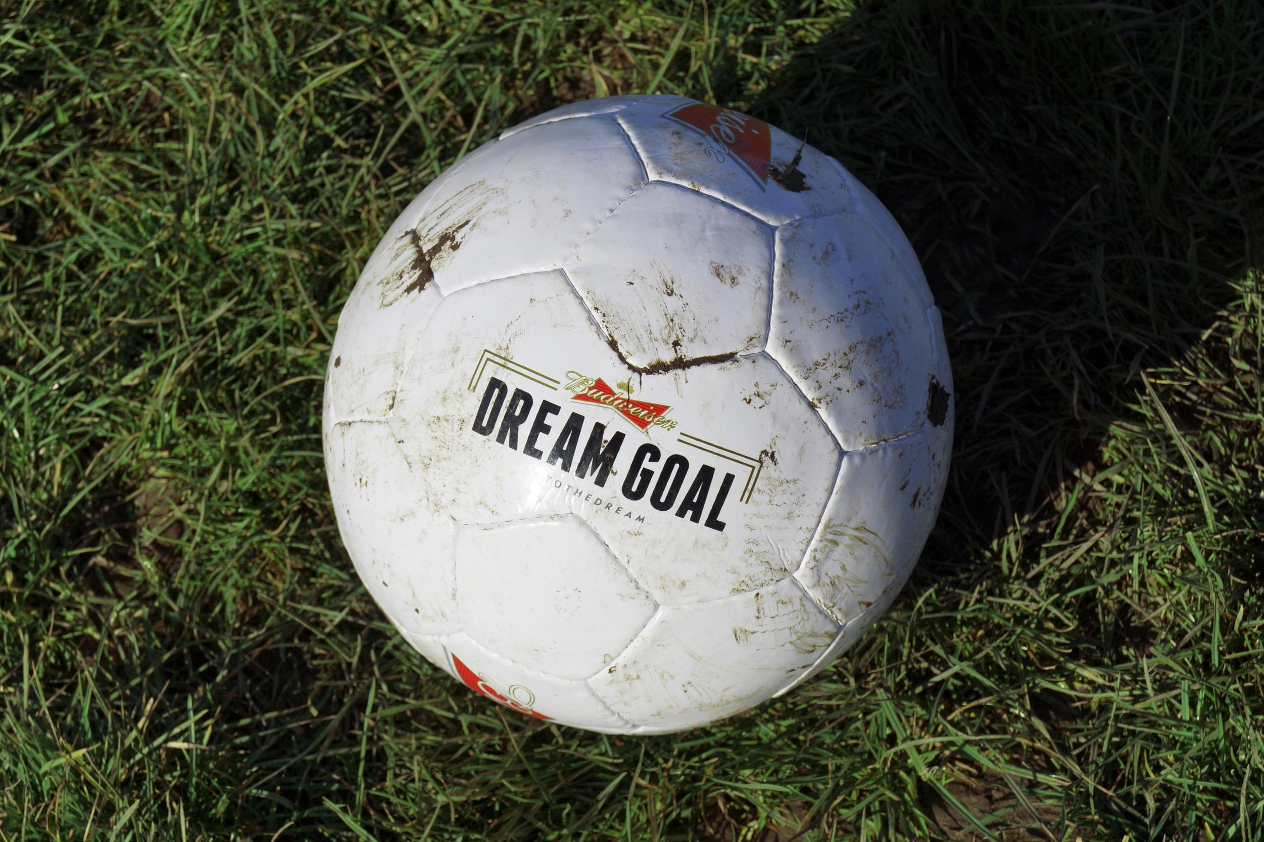 Budweiser Dream Goal Football