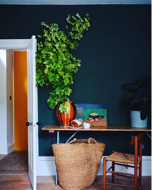 It's all about Nature in Farrow and Ball new Collection with the Natural History Museum. Duck Green is named after the deep green plumage of a mallard. You can find it in our new home in Mitchell Hill! #farrowandball #farrowandballpaint  #charlestondaily  #interiorinspirations