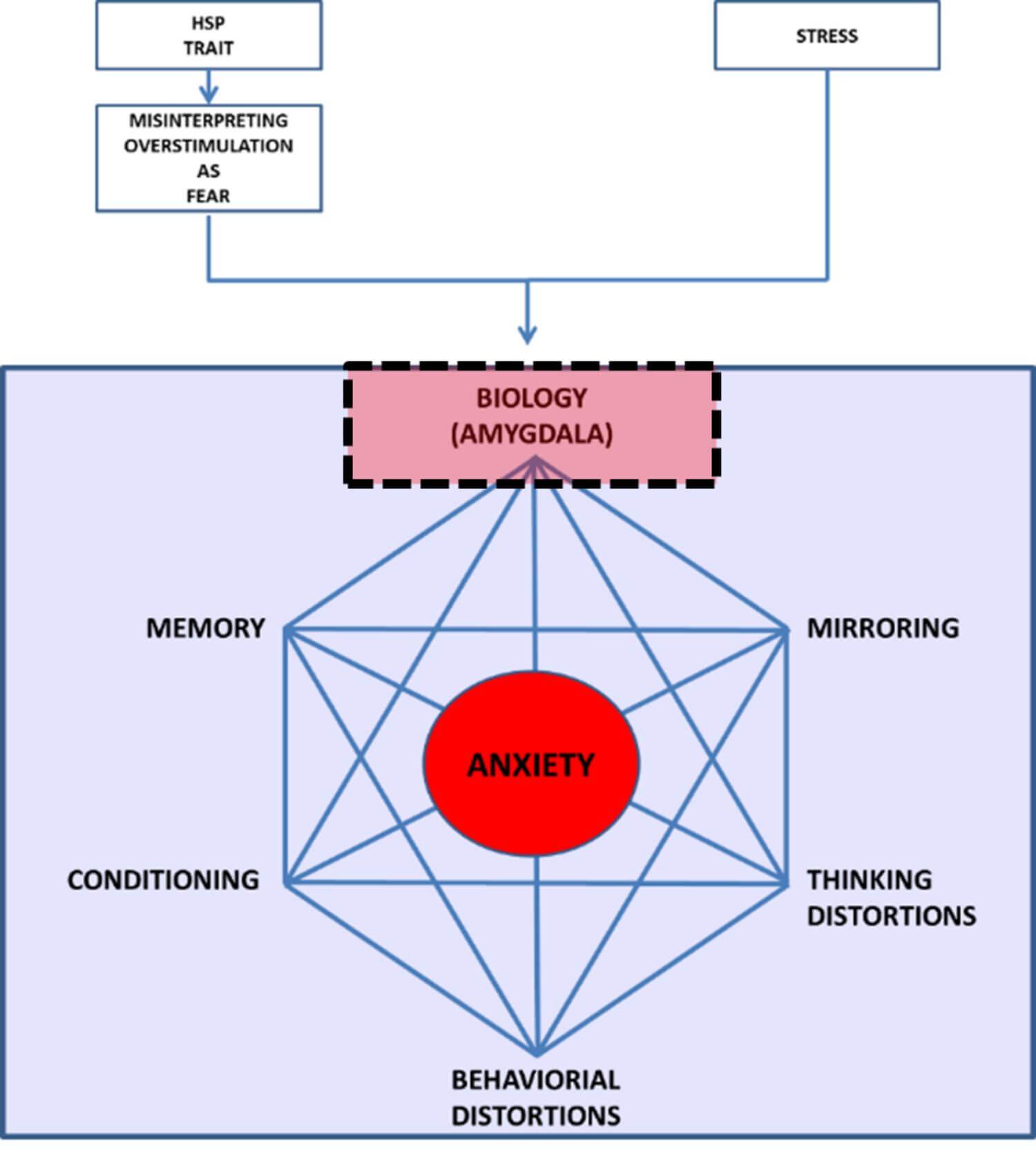 anxiety-amygdala