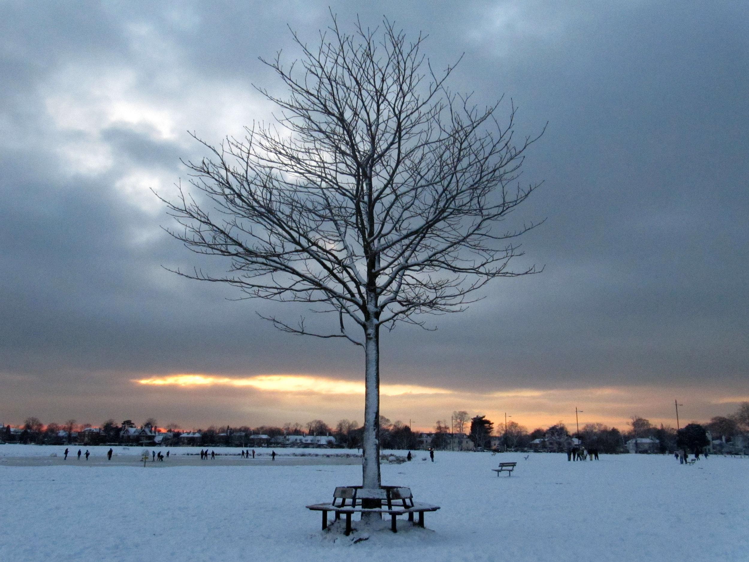 Snow on Wimbledon Common in 2010 - Katie Collins/Press Association