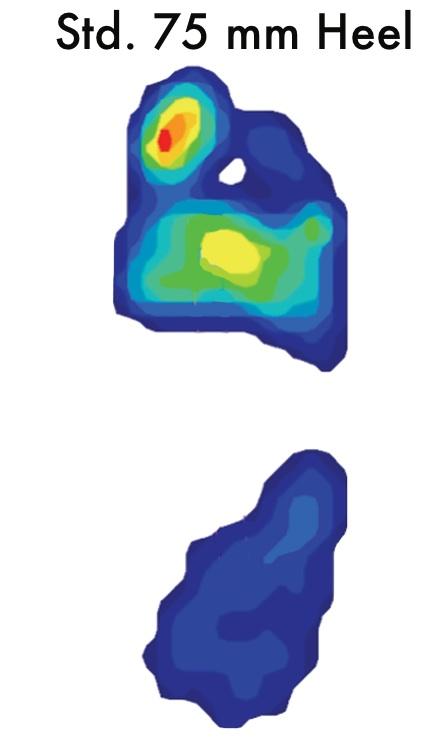 Pressure Map Std Heel.jpg