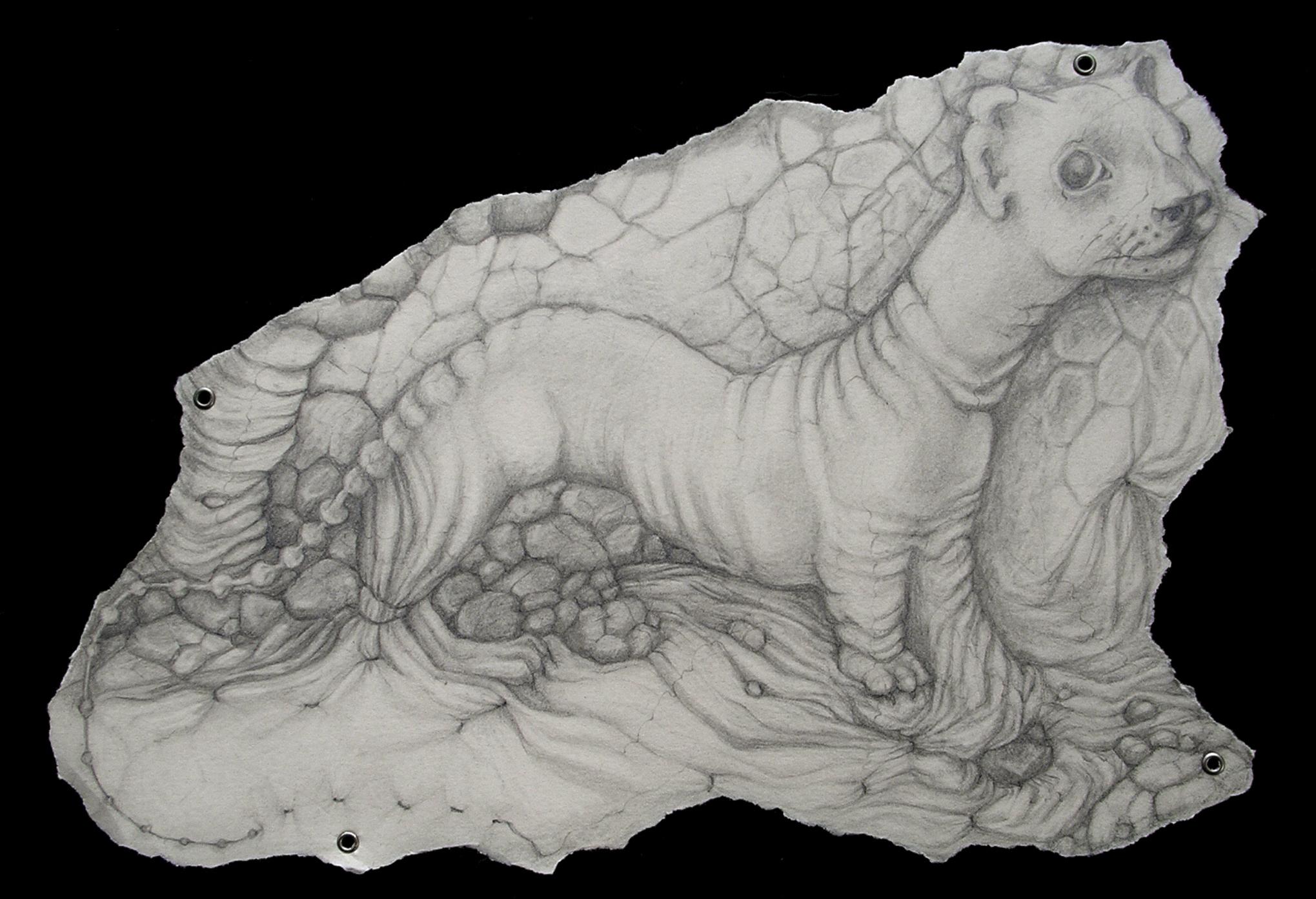 Encyclopedia of Natural History (2006)