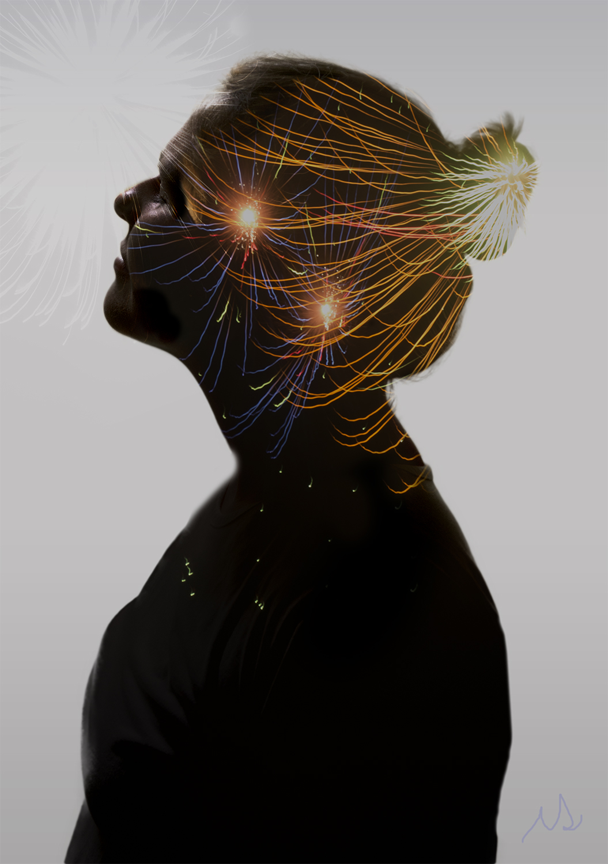 adeciccophoto-fireworks-silhouette