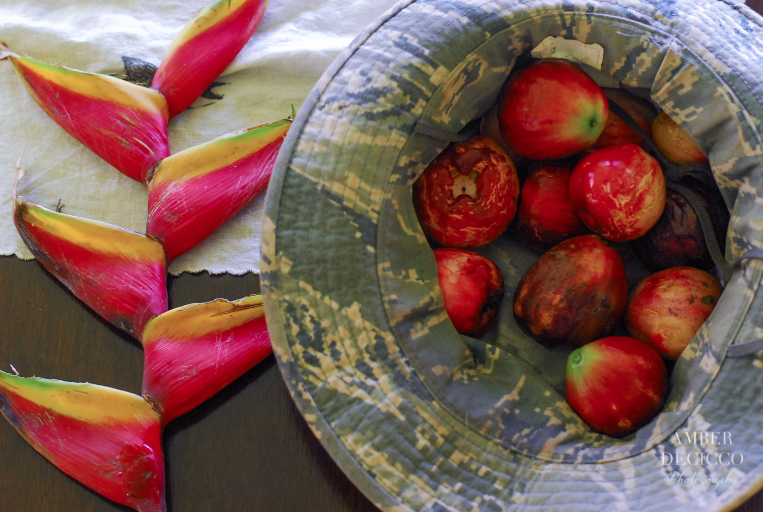 Our hike haul :) We met a kind man on our trail, and he gave us the heliconia plant. There we also lots of very ripe mountain apples along the trail! We picked a few for breakfast...