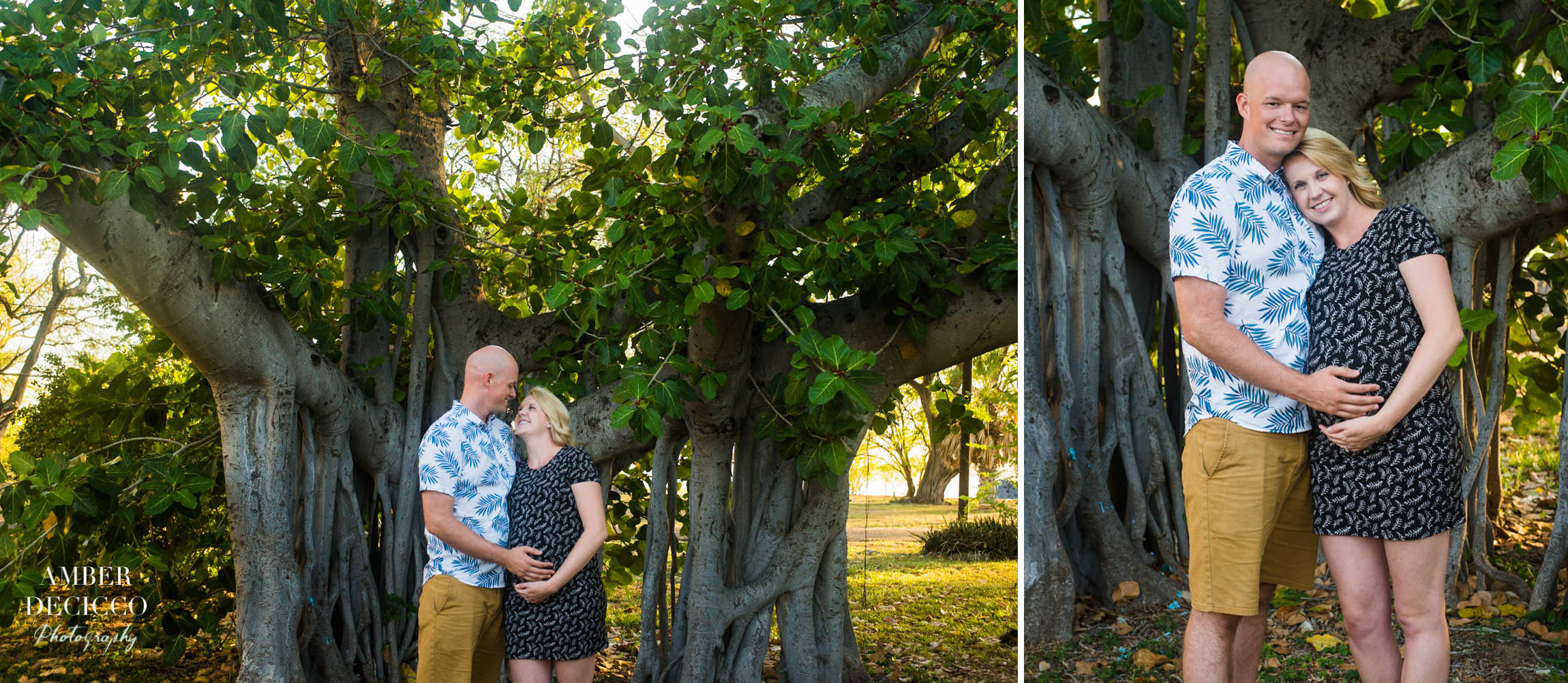 Banyan Tree Maternity Photograph
