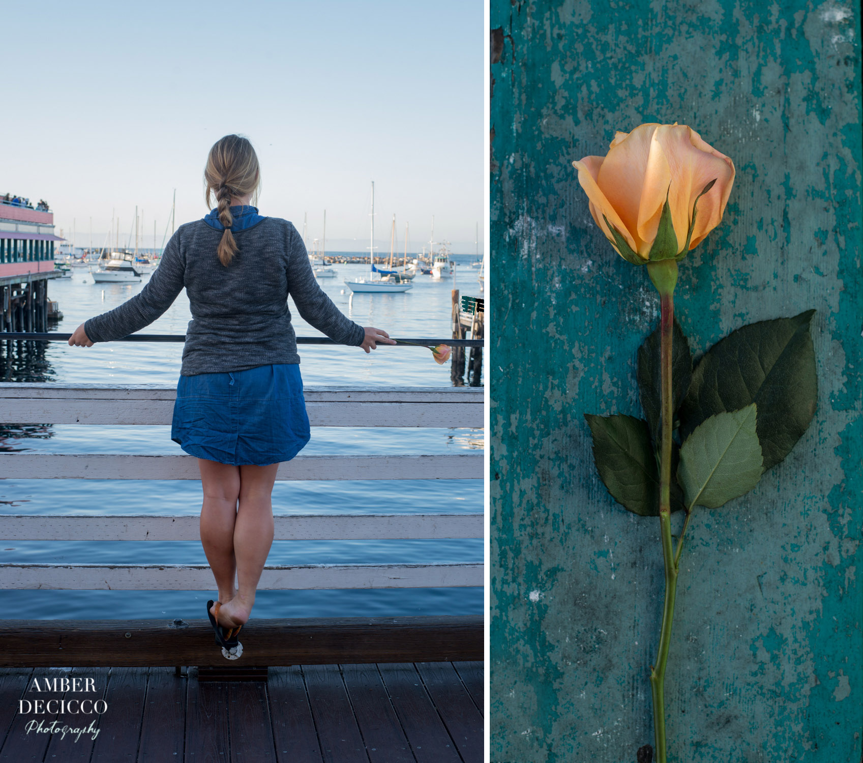 amberdeciccophoto-monterey-2016-20-collage.jpg