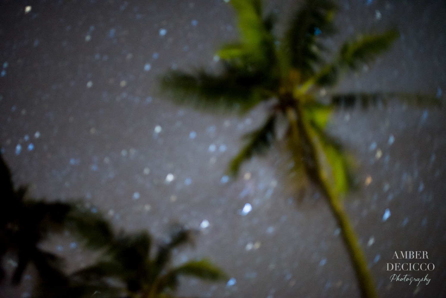 A starry night photo that I think is so beautiful. Sometimes blurry photos just work.