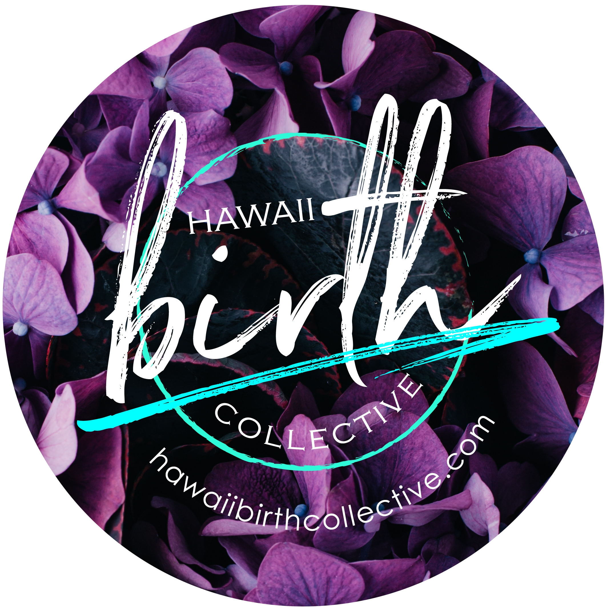 Oahu Hawaii Birth Collective