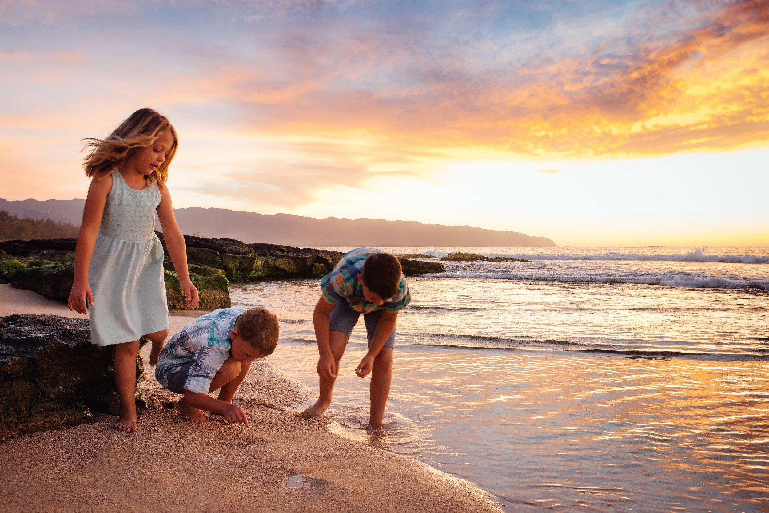 terry-hawaii-2017-9212.jpg