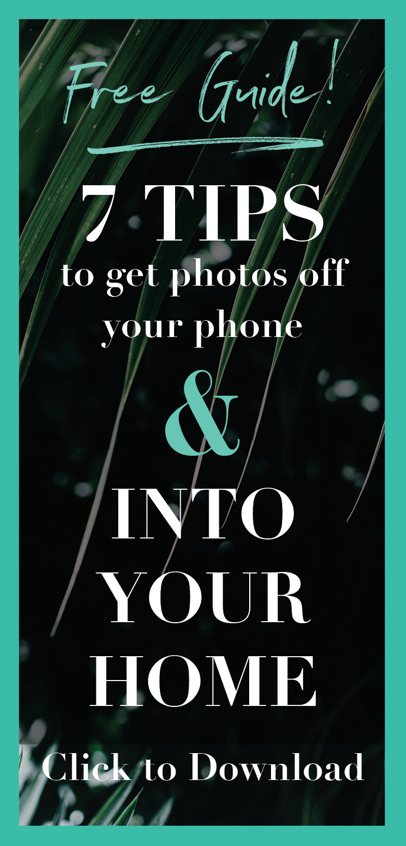 opt-in-7-tips-photos-in-home.jpg