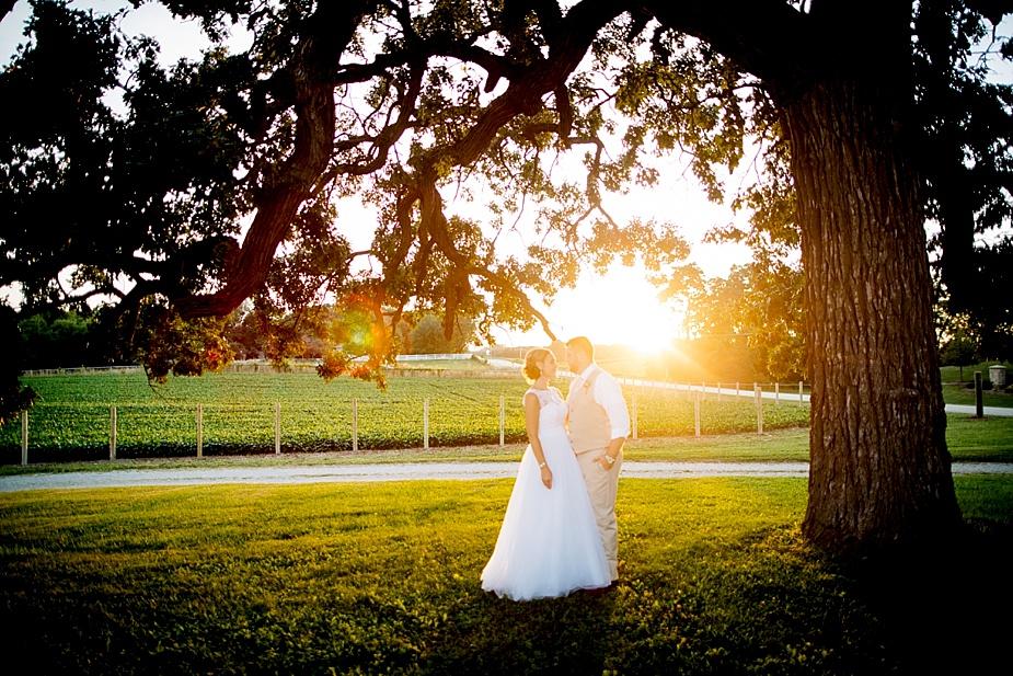 Taylor+Lauryn-Barn-Wedding-Milwaukee-Wedding-Photographer_0075.jpg