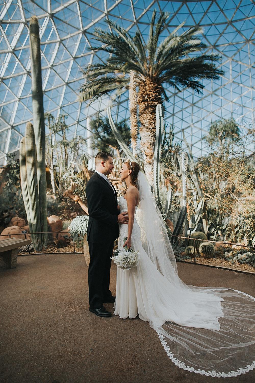 Intercontinental Milwaukee Wedding - Milwaukee Winter Wedding - Liller Photo - Milwaukee Wedding Photographers - Mitchell Park Domes