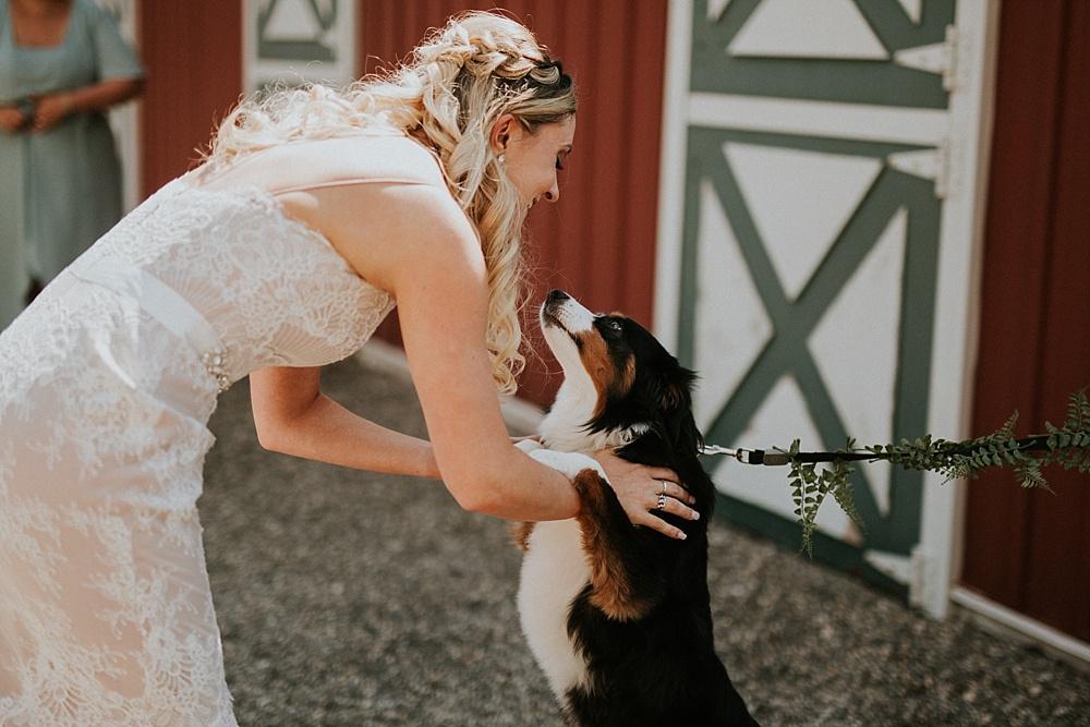 Mike-Amanda-Pavilion-at-Orchard-Ridge-wedding_0031.jpg