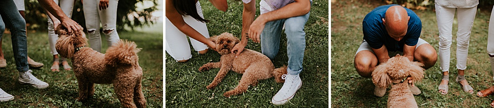 haecker-family_milwaukee-lifestyle-photographer_liller-photo_0009.jpg
