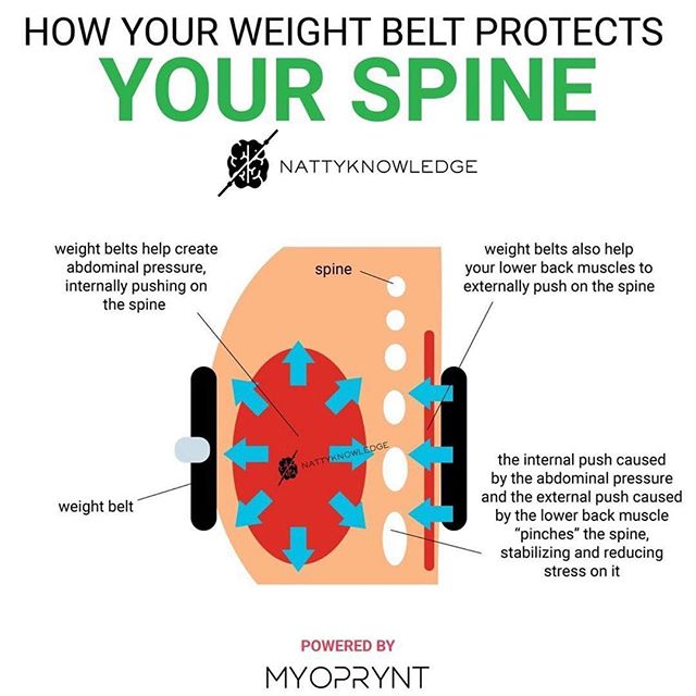 Some good knowledge to spread & #repost about how to properly use abdominal pressure with your lifting belt. It's important to find a balance. A belt is an excellent tool but it isn't designed to do all the bracing for you. - If you can't achieve a full breath under heavy loads, you may want to consider taking it down one notch. Try it out! 🤙 - #powerlifting #gym #nattyknowledge #willpowerstrength #deadweightstrength #bodybuilding #fitness #sandiego