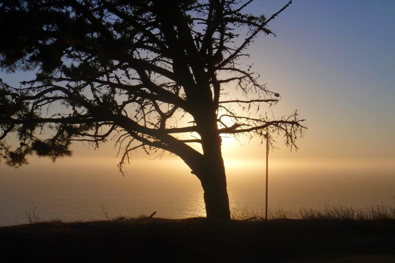 2013 Big Sur 600km Brevet