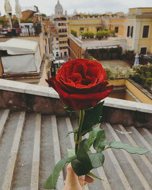 """The """"not so free after all"""" rose for the pretty lady. 🌹😂 #wheninrome"""