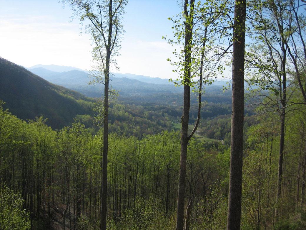 RidgetopQuitlersRetreat_View2.jpg