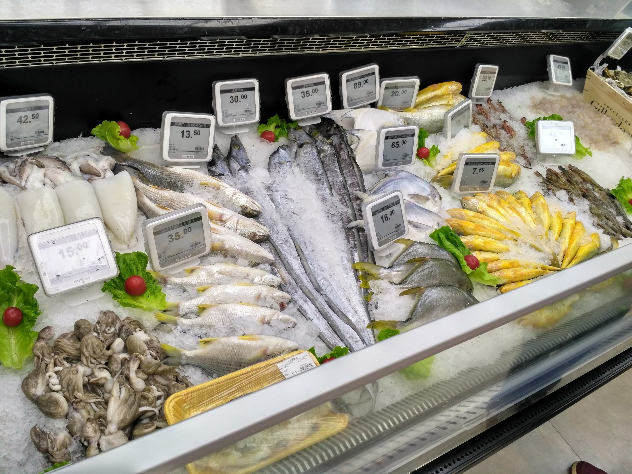Wet area fresh seafood display with electronic shelf labels in protective casings