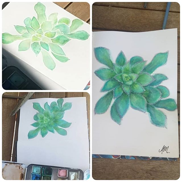 Enjoying some beautiful sunshine today, decided to sit outside & paint one of my plants, my first attempt at a succulent ever :) Watercolour paint, A6 size in 3 stages of progress