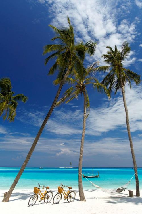 Gili Lankanfushi Maldives .jpg