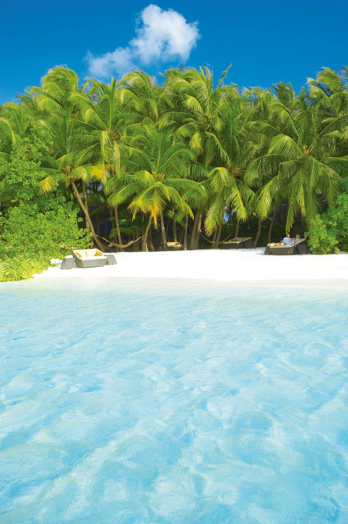 white sand beach maldives.jpg