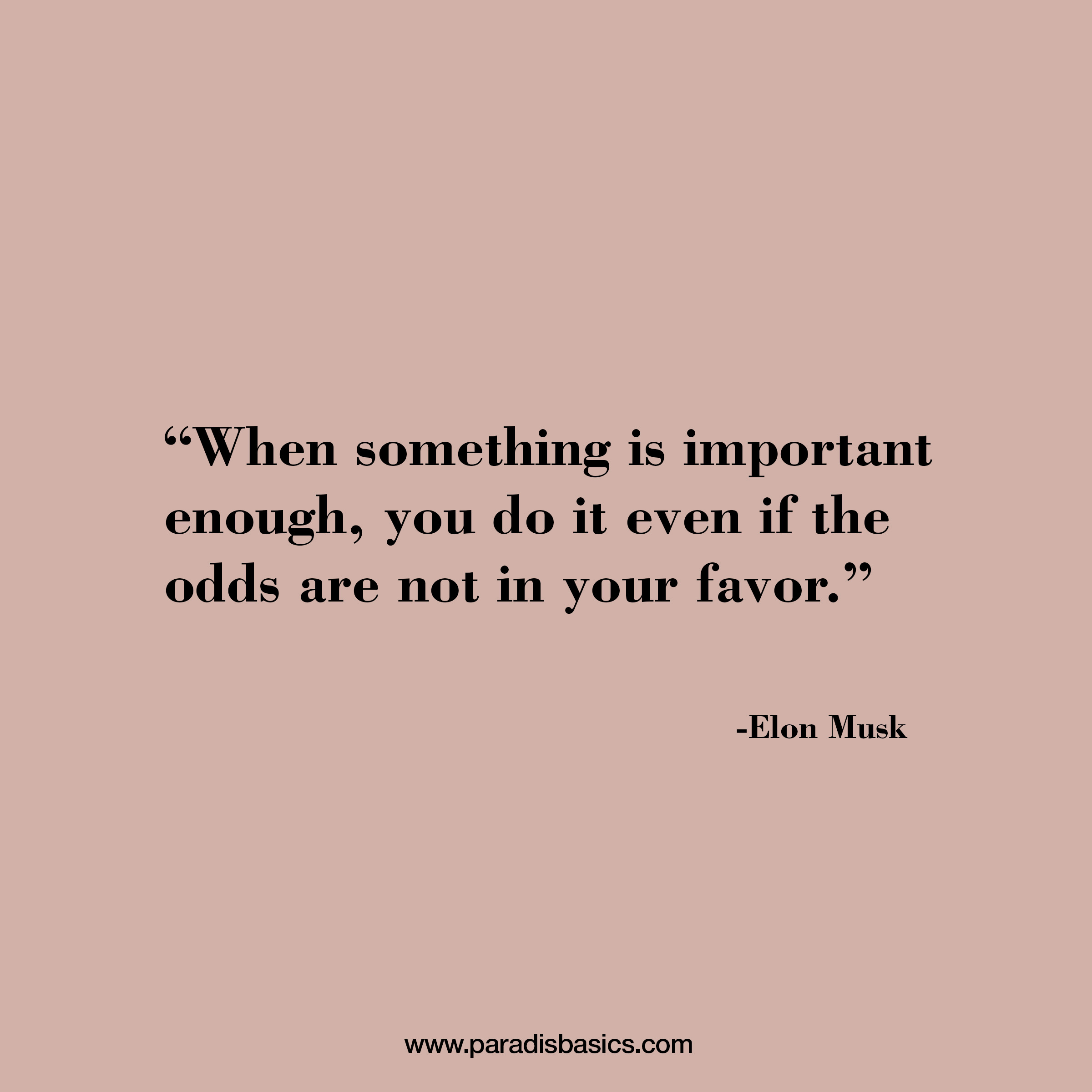 """""""When something is important enough, you do it even if the odds are not in your favor."""" Elon Musk"""