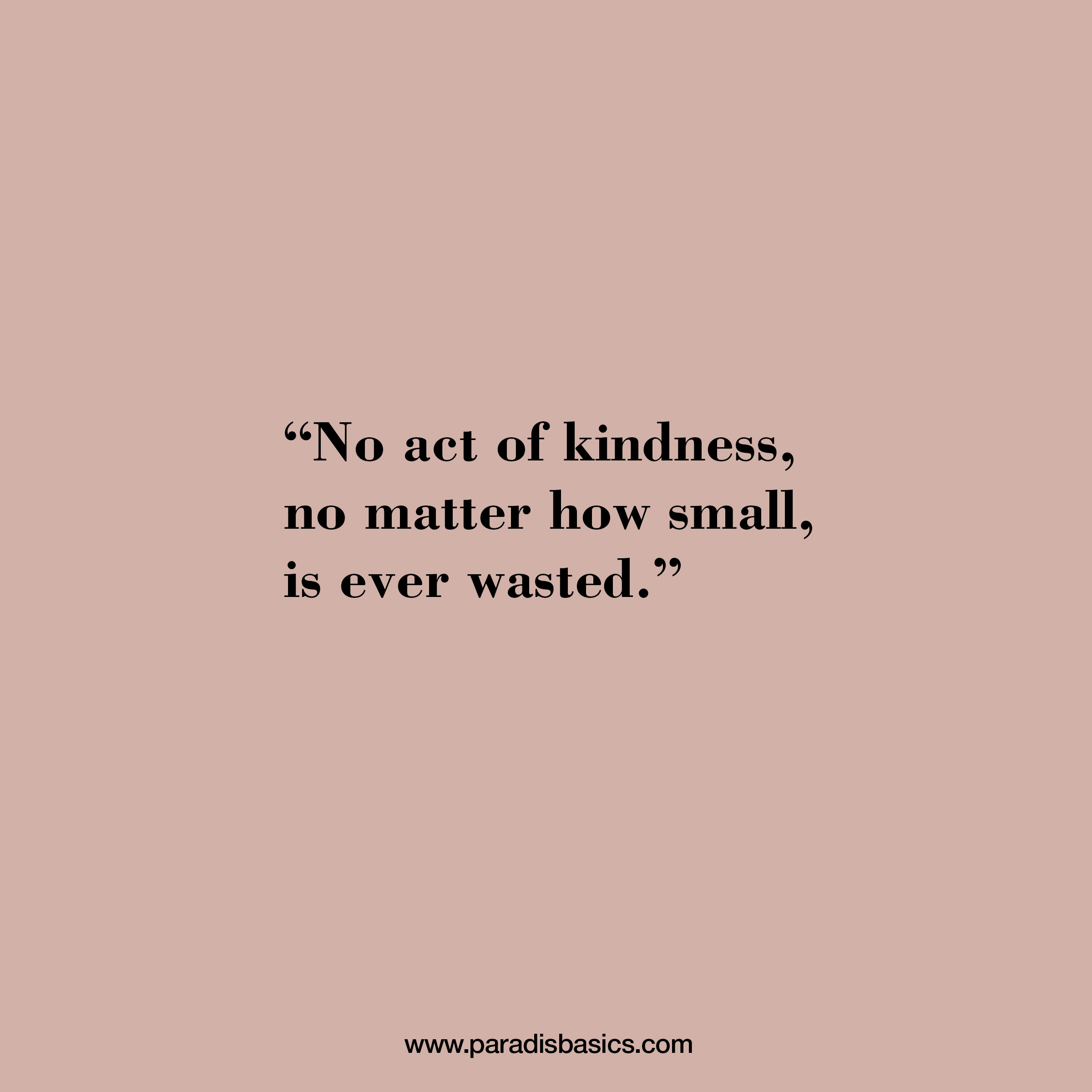 No act of kindness no matter how small, is ever wasted.
