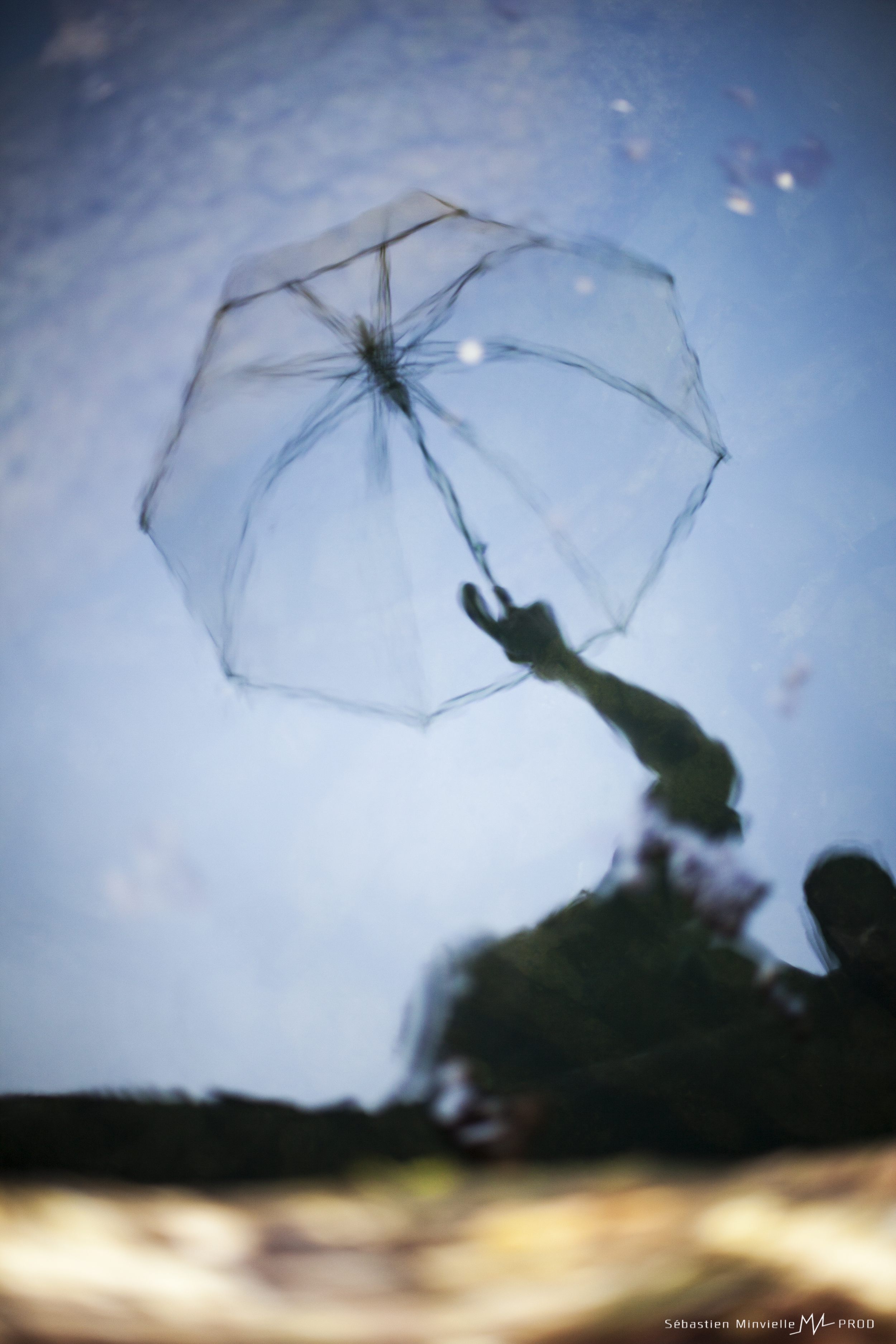 reflet  parapluie.jpg
