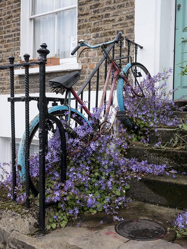 Bike overgrown with flowers, Shepherd's Bush
