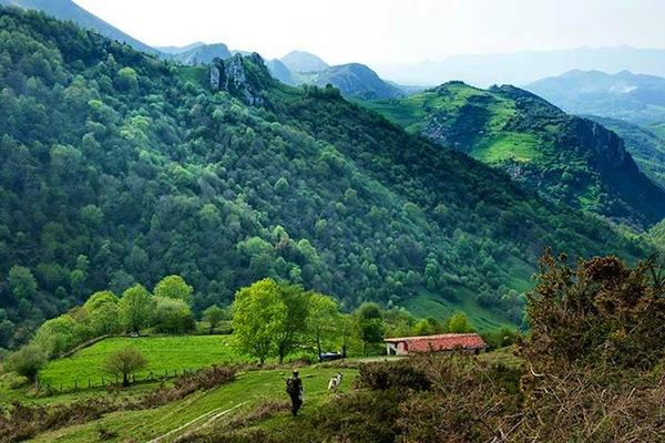 Asturias_web[2]