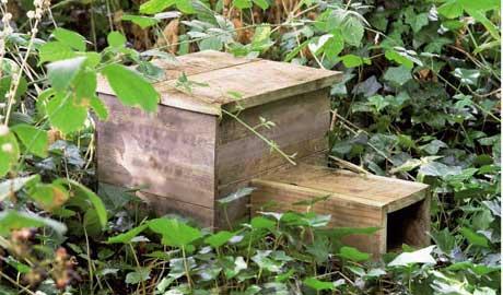 A finished hedgehog box