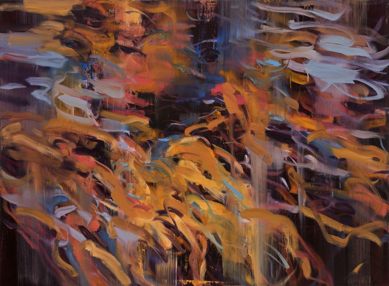 Untitled no 2 (dark ground)  2015  oil on canvas  146 x 199 cm