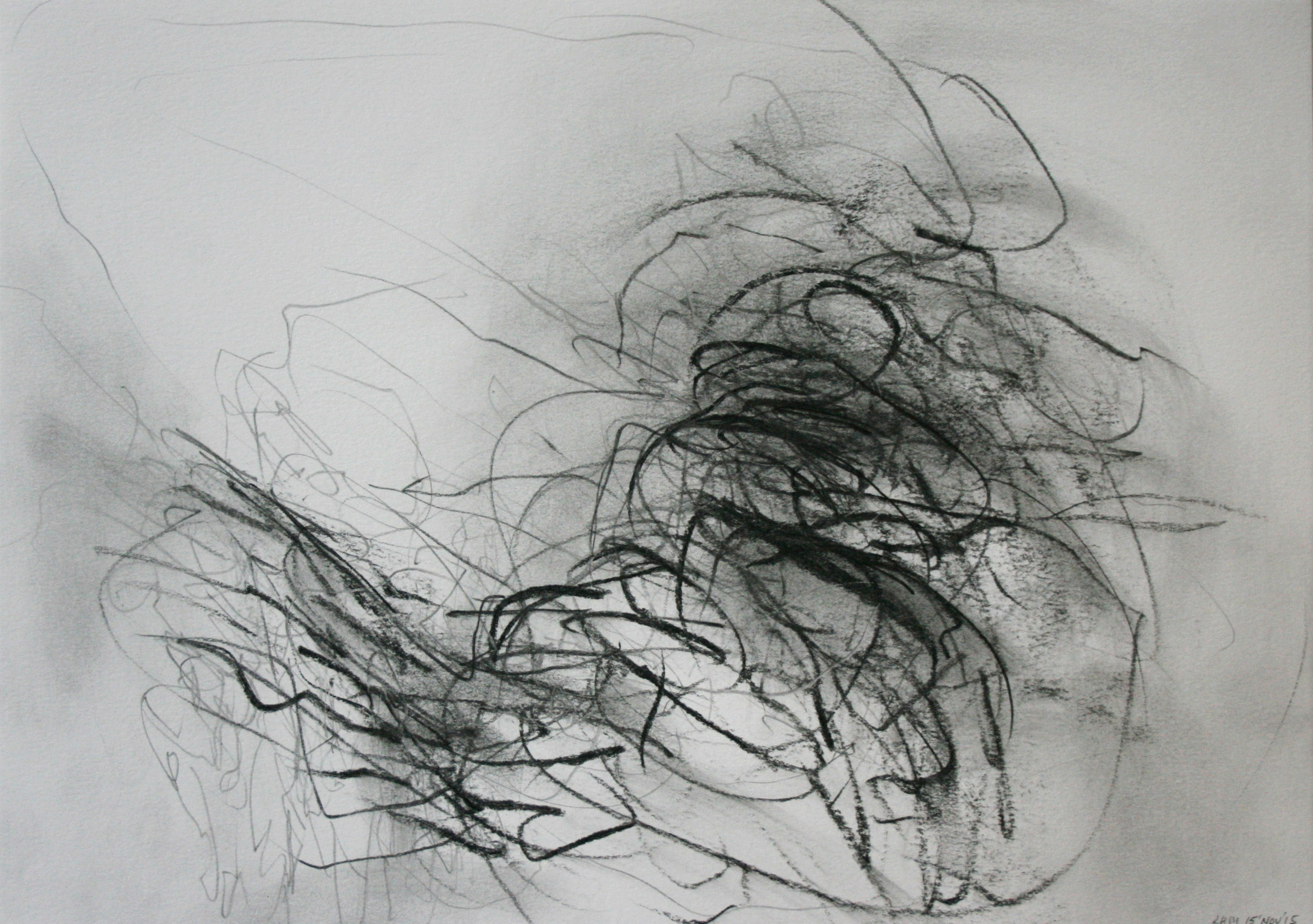 Left hand Drawing V  November  2015  graphite on paper  21 x 30 cm