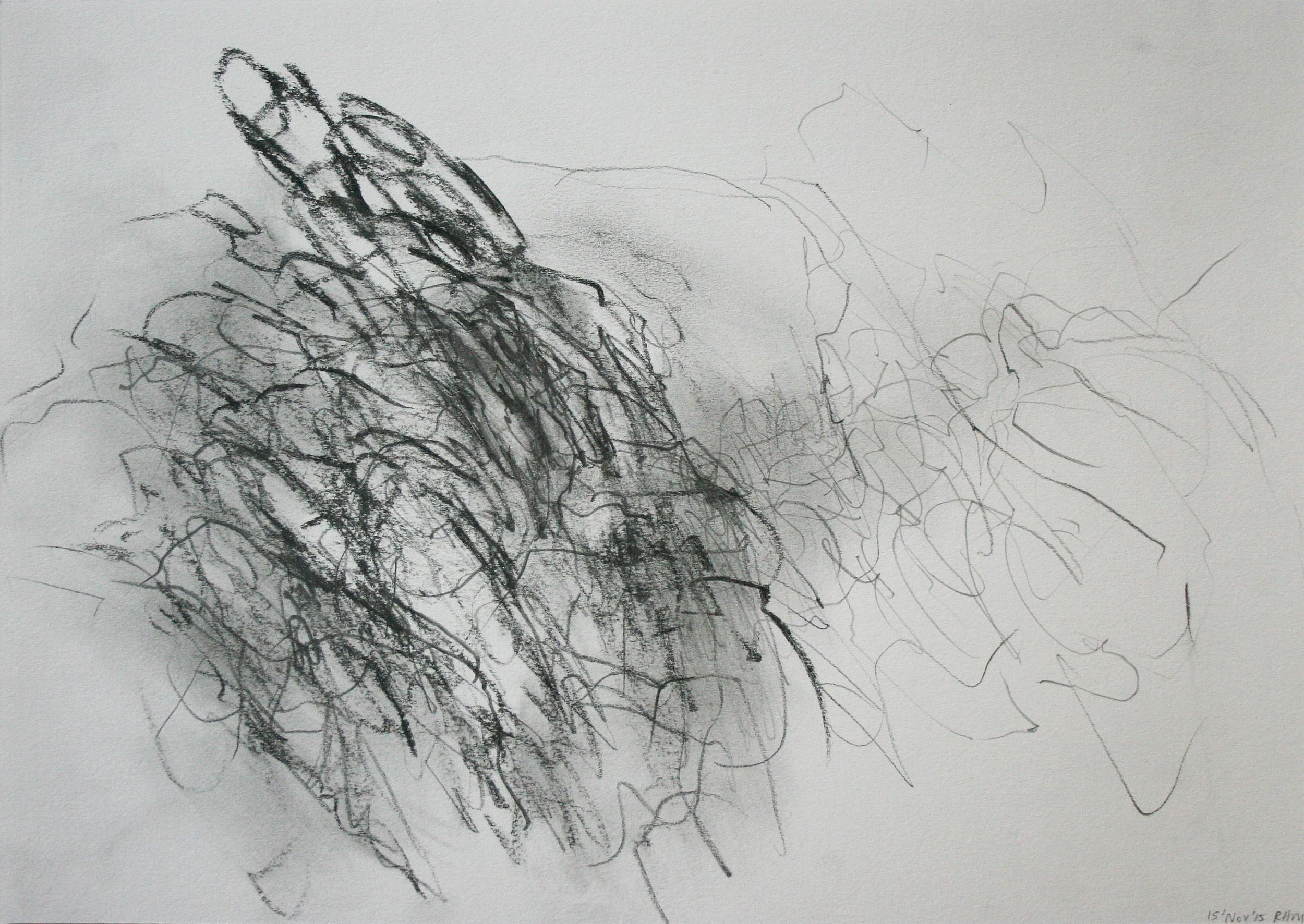 Left hand Drawing VI  November  2015  graphite on paper  21 x 30 cm
