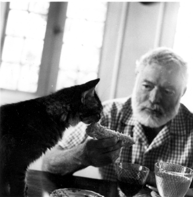 Ernest Hemingway, sharing part of his sandwich with one of his cats.