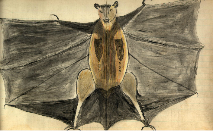 A Bat by Black Hawk