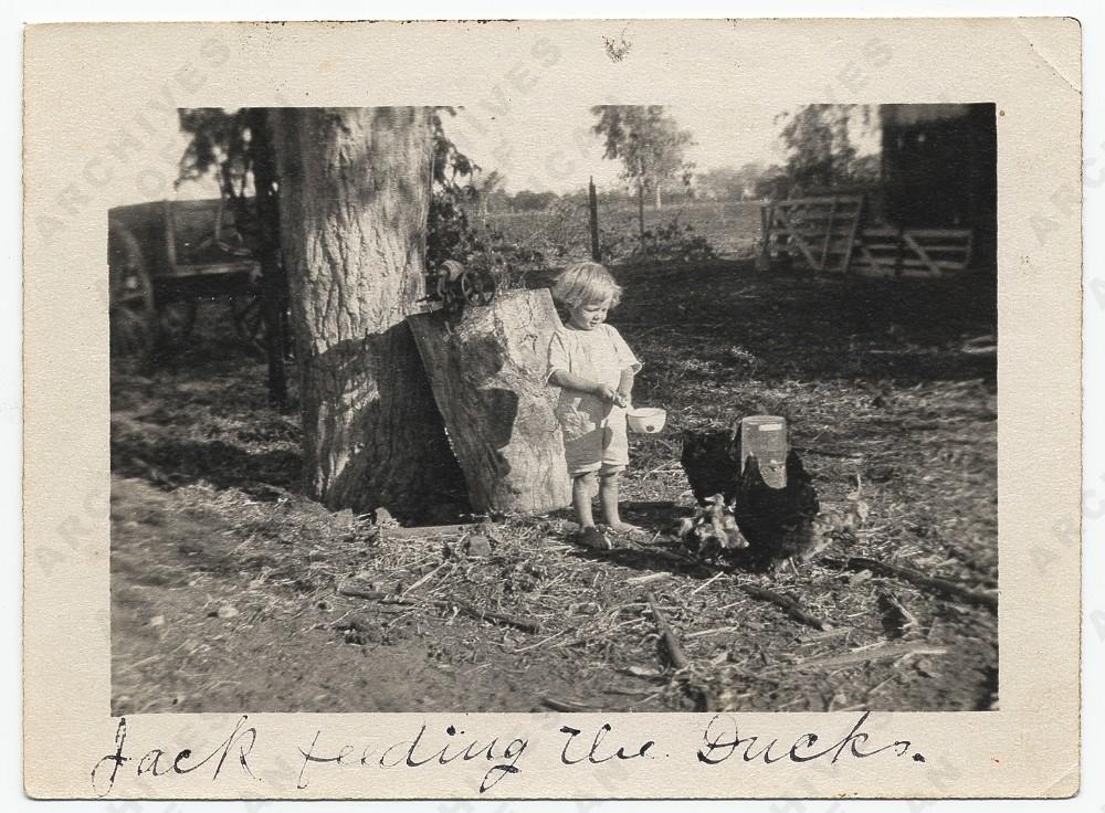 Jackson Pollock feeding ducks, 1914