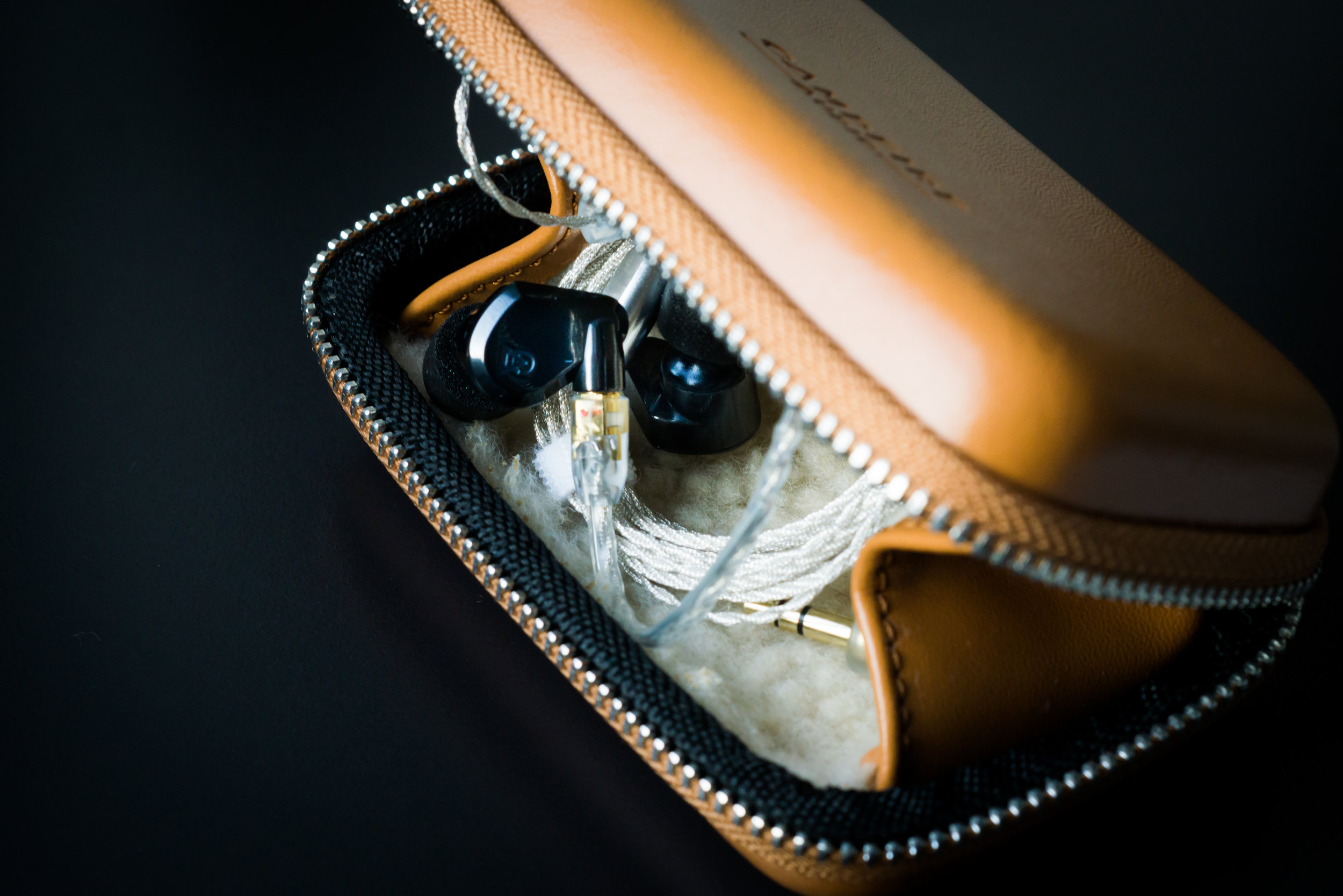 Campfire Audio Lyra - Well protected in the excellent quality earphone case.