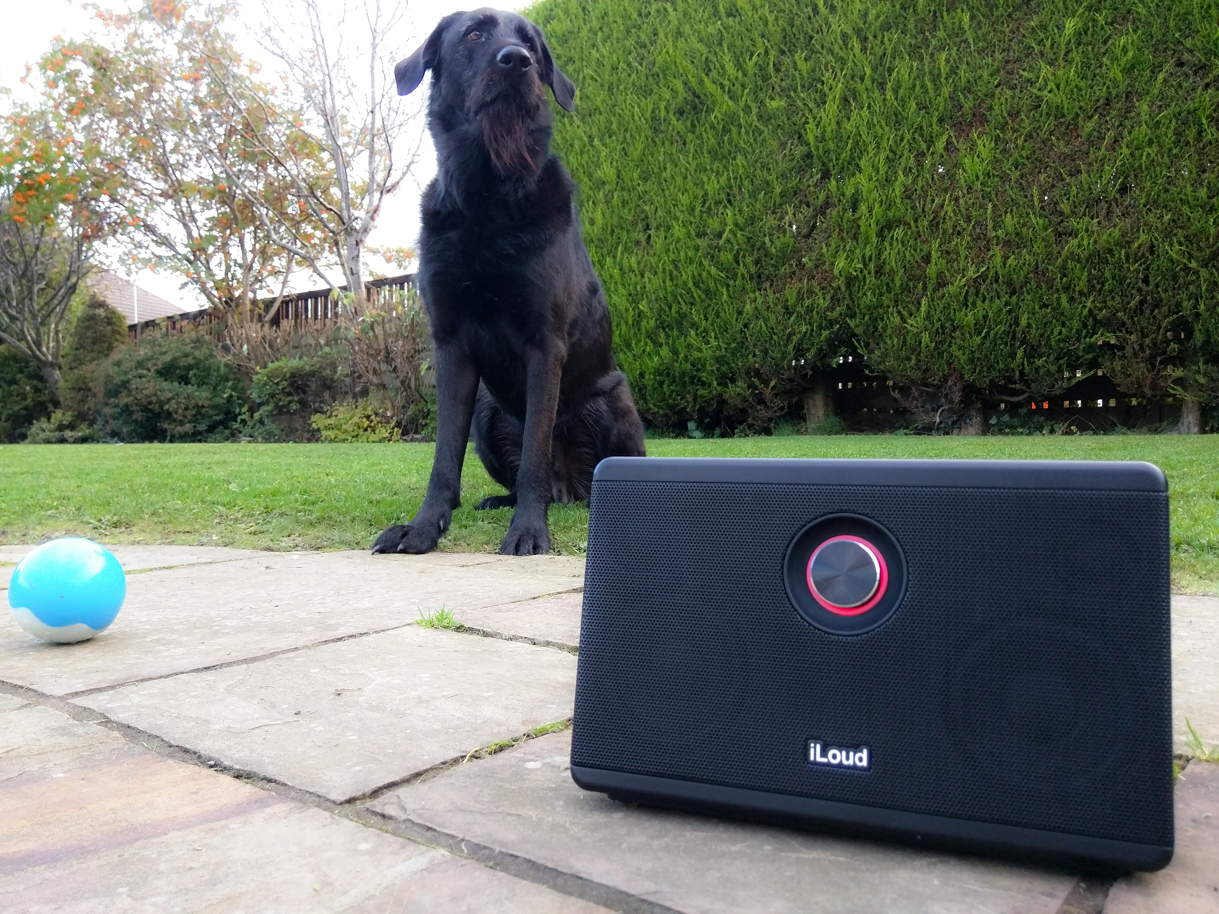 Iloud speaker review - Finnaly a bluetooth speaker loud enough to be used outdoors