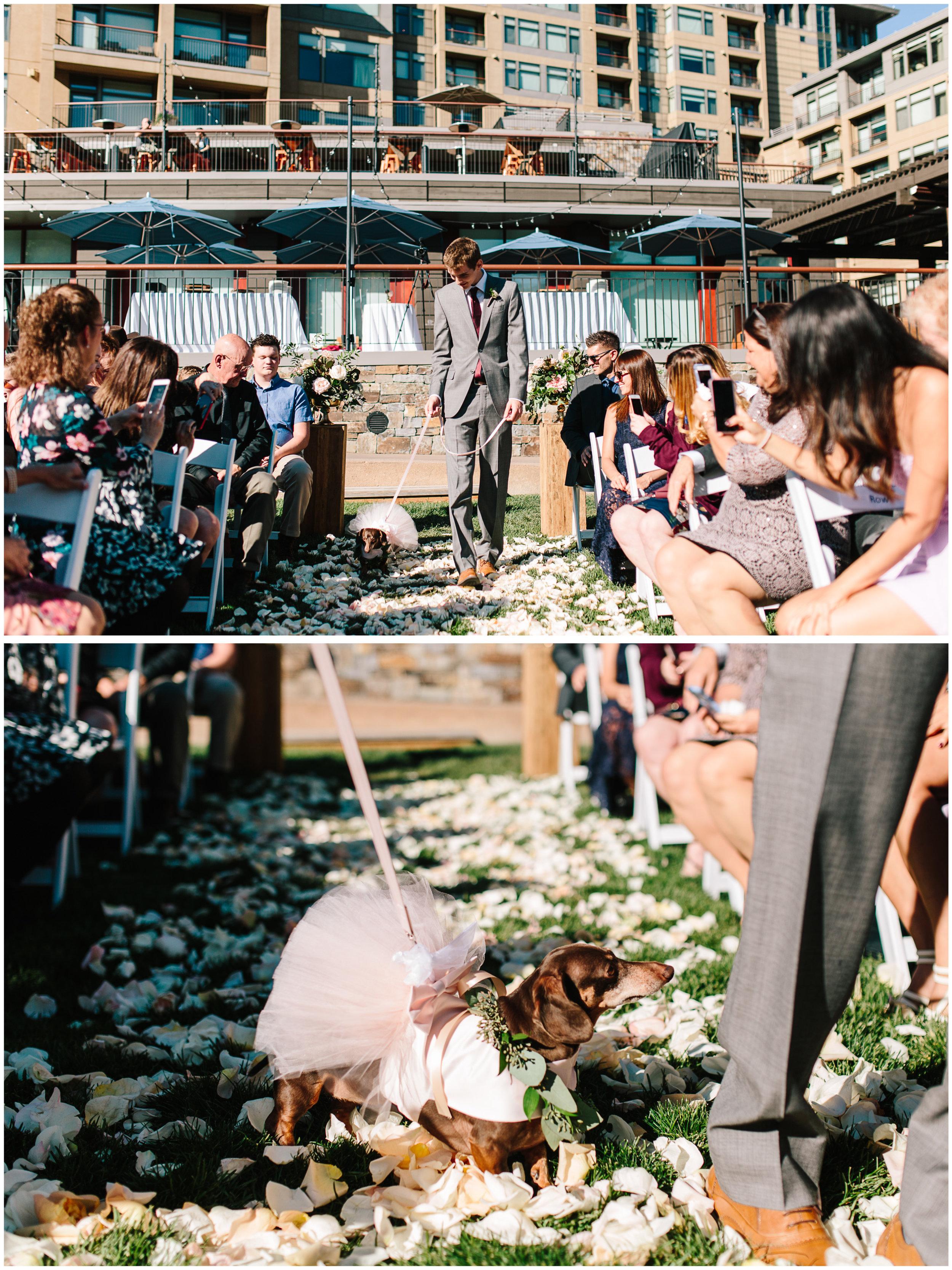 westin_riverfront_wedding_36.jpg