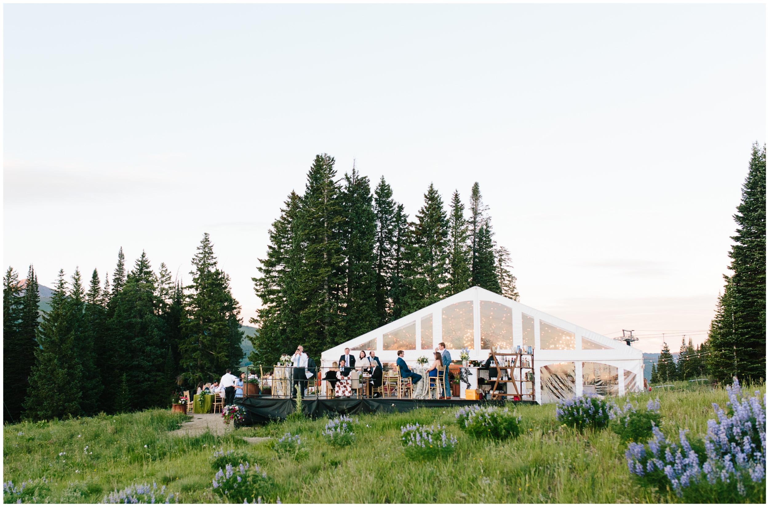 crested_butte_wedding_122.jpg