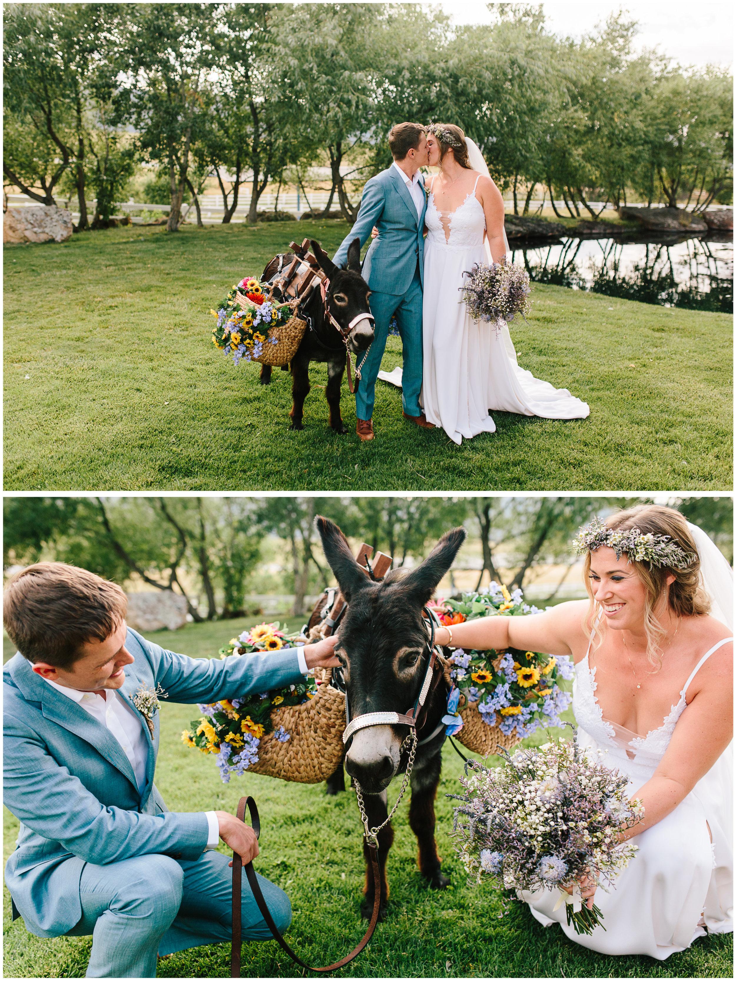crooked_willow_wedding_38.jpg