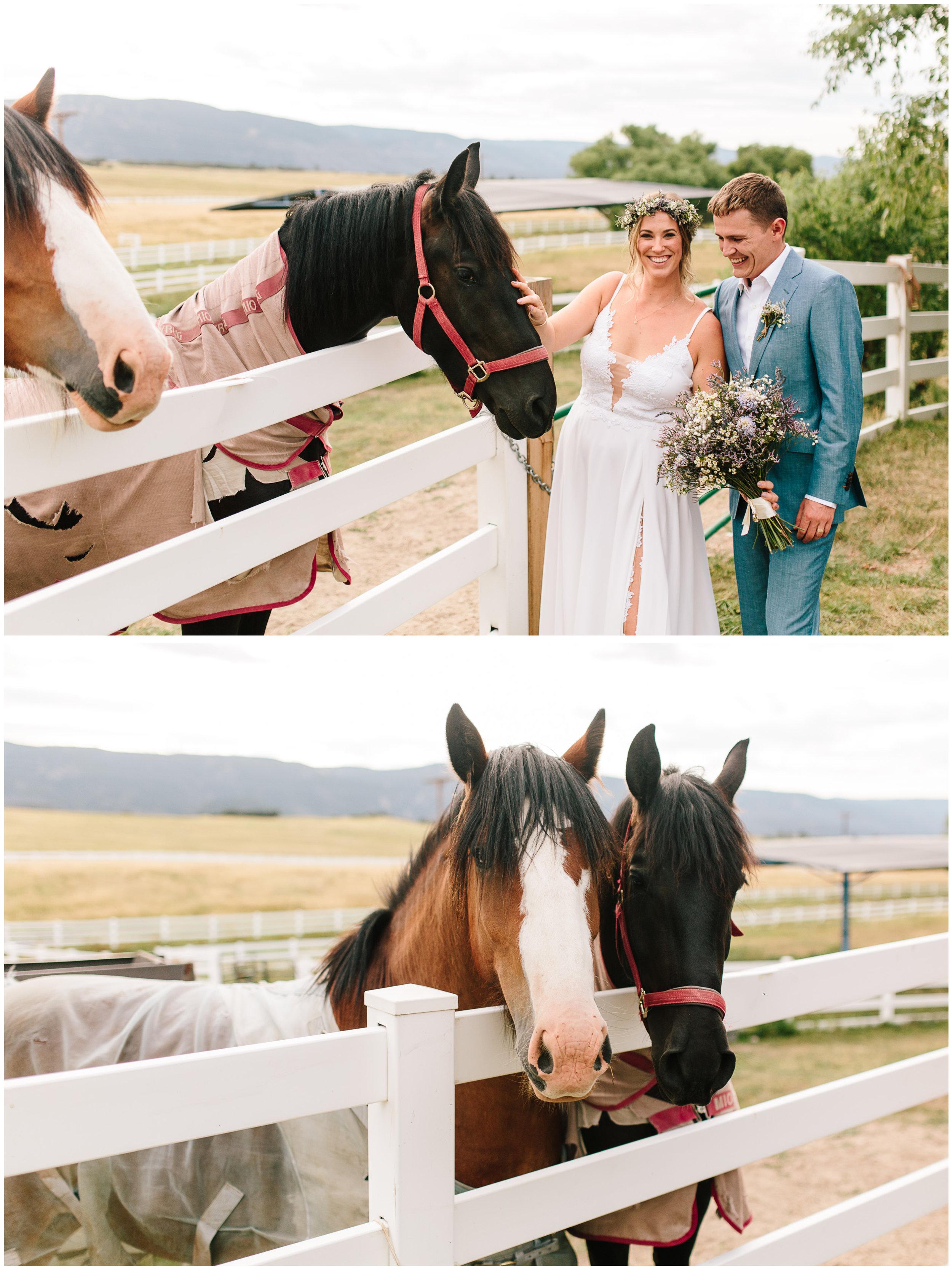 crooked_willow_wedding_43.jpg